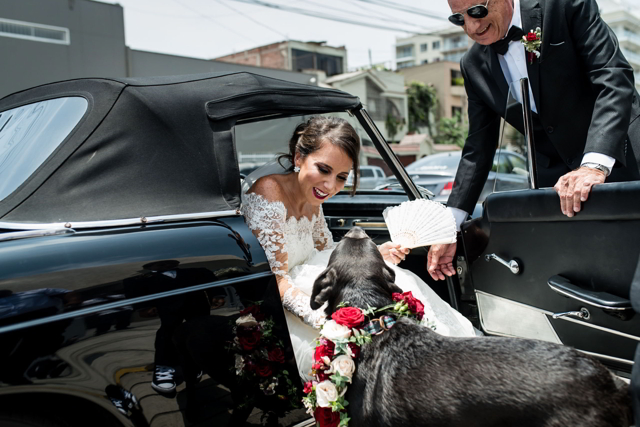 mascota de los novios entregando, recibiendo a la novia